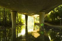 Green Concrete Grove von kamikaye