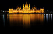 Budapest, House of Parliament by Tiberiu Calin  Gabor