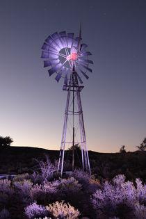 'Windpomp' on Bloukrans farm, The Karoo, South Africa. 2010. by Niel Brink  Vosloo