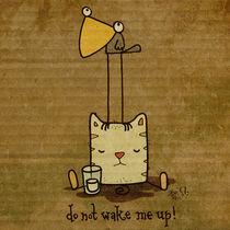do not wake me up! von sadi tekin