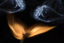 Burning match, close up by Sami Sarkis Photography