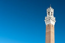 Campanile, Siena by Michael Schickert