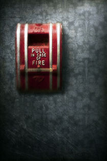 in case of fire by Priska  Wettstein