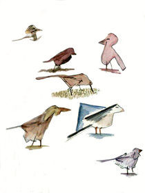 Birds by Sarah K Murphy