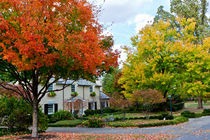Autumn in an american suburb. USA, Kentucky von Irina Moskalev
