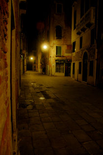 Venice alley way by Brian  Leng