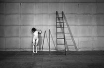 Nude and Space #13 von Jorge Pedra