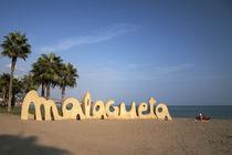 Malagueta by Tatjana Walter
