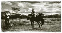 Horsebreaking in the venezuelan llanos by Juan Carlos Lopez