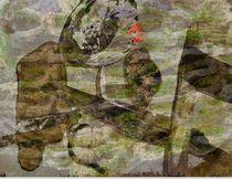 Treibgut-collage