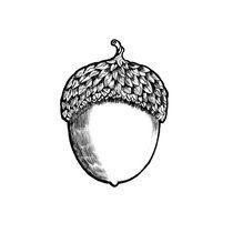 acorn by Anna Ivanova