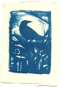 Raven  von Diana Phillips