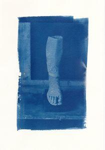 Roman Leg von Diana Phillips