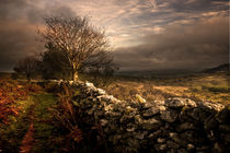 Drystone Wall, Haytor von Mal Smith