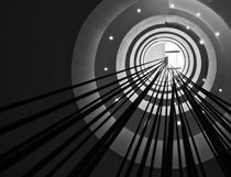 circles and straight lines by Viktoria Papp