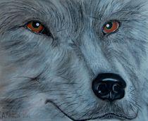 Wolf von Anke Franikowski