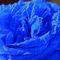 Rose-blau