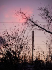 railroad with pink cloud 1 by Gabriele  Nolte