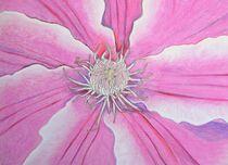 Blossom von farbklecks