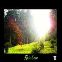 Rainbow von heckthor