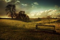Rolling Meadows of Derbyshire by Mal Smith