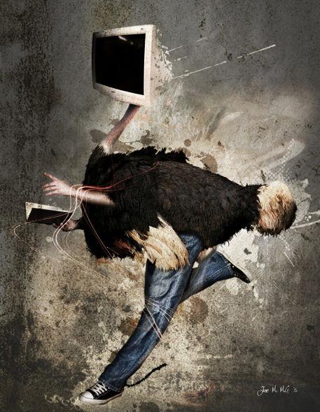 Ostrich-collage-ii-copia-2
