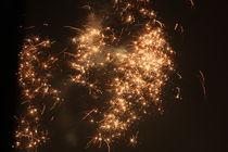 New Years Evening 2008-2009 von Alex Voorloop