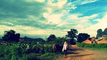 Guilin-walk