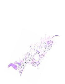 Lilac von Johanna Fernihough