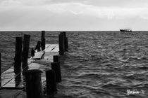 Muelle by Yasmin  Solares
