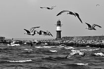 Sturmflug - Warnemünde by captainsilva