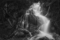 wildwasser von Norbert Maier