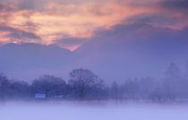 Wintermorgen by Norbert Maier
