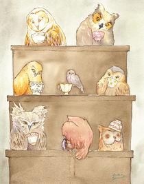 The Owls of Dumbree by Greta Schimmel