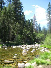 Bachlauf im Yosemity Nationalpark USA von Baerbel Nitychoruk