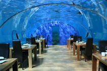 Underwater restaurant by Ruchika Vyas