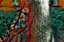 El Abominable Cactus Verde (Der Abscheuliche grüner Kaktus) by Daniel  Soriano Correa