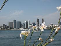 Kalifornien - Blick auf San Diego von Baerbel Nitychoruk