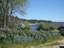 Schwedische Idylle im Frühling von Baerbel Nitychoruk