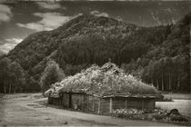 House norway vintage b&w von Maximiliano Galain