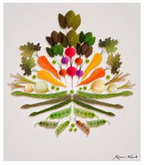 Veggie-mania! von Rebecca Elfast