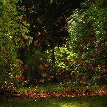Oktobertanz von Franziska Rullert