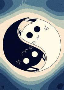 cat yin and yang by Nimas Arum