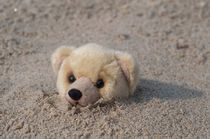 Teddy Buried in Sand by Michael Bastianelli