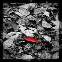 Autumn von Waldemar Moll