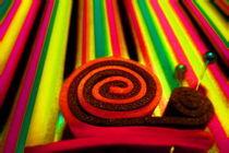 Snail Trip by Daniel  Soriano Correa