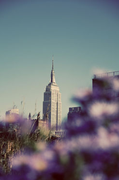 Empire-state-from-high-lin-copy