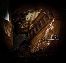 Rusty boat in Iceland von Camille garcia