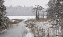 Wintereinbruch by Norbert Maier
