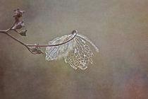 Magic of simplicity von Maria Ismanah  Schulze-Vorberg